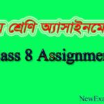 Class 8 Assignment All Subject Solution