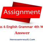 Class 6 English Grammar Assignment 4th Week Answer-English 2nd Paper