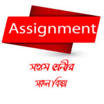 Class 7 Assignment All Subjects Answer